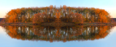 Paesaggio con gli alberi che riflettono in un lago Immagini Stock