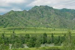 Paesaggio con gli alberi delle montagne e un fiume Fotografia Stock