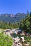 Paesaggio con gli alberi delle montagne e un fiume Fotografie Stock