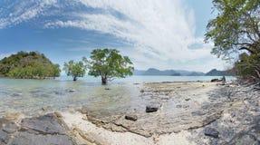 Paesaggio con gli alberi e le isole Fotografia Stock