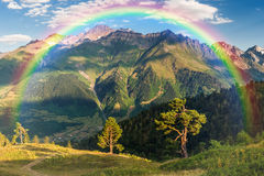 Paesaggio con gli alberi e le montagne Immagini Stock