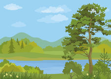 Paesaggio con gli alberi ed il lago mountain Fotografie Stock