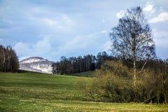 Paesaggio con i campi Fotografia Stock