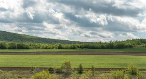Paesaggio con i campi di agricoltura e le aree verdi su Sunny Day con il cielo nuvoloso immagine stock libera da diritti