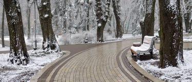 Paesaggio con i fiocchi di neve di caduta - banco di inverno coperto di Sn fotografia stock