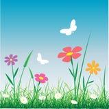 Paesaggio con i fiori Immagine Stock Libera da Diritti