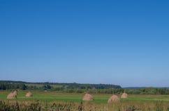 Paesaggio con i mucchi di fieno sul campo Immagine Stock Libera da Diritti