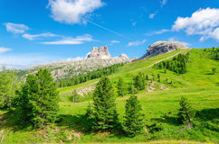 Paesaggio con i pini verdi, Italia della montagna Fotografie Stock Libere da Diritti
