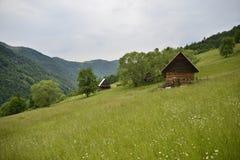 Paesaggio con i prati e le case di legno Fotografie Stock Libere da Diritti