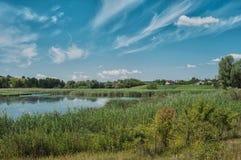 Paesaggio con il bello lago Immagini Stock