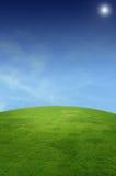 Paesaggio con il campo di erba Immagini Stock Libere da Diritti