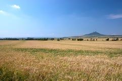 Paesaggio con il castello Fotografia Stock