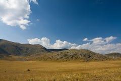 Paesaggio con il cielo drammatico blu Fotografia Stock