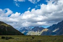Paesaggio con il cuoco del supporto, Nuova Zelanda Fotografie Stock