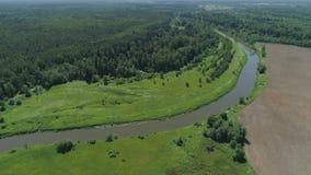 Paesaggio con il fiume e gli alberi archivi video