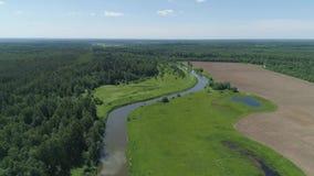 Paesaggio con il fiume e gli alberi video d archivio