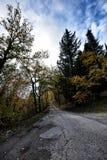 Paesaggio con il fiume e gli alberi XIX immagini stock libere da diritti