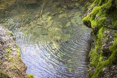 Paesaggio con il fiume e pietre in giungla Fotografie Stock