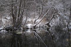 Paesaggio con il fiume in legno di inverno Fotografia Stock