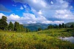 Paesaggio con il lago delle montagne Immagine Stock Libera da Diritti