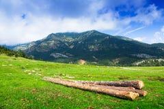 Paesaggio con il prato della montagna Immagini Stock