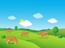 Paesaggio con il prato e le mucche verdi Bella valle Immagini Stock Libere da Diritti