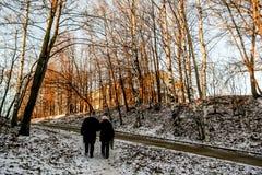 Paesaggio con il primo mattino di camminata di due persone immagine stock