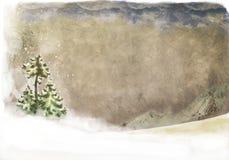 Paesaggio con l'albero di abete snow-clad Fotografia Stock