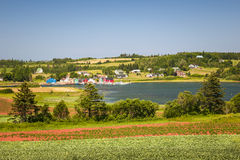 Paesaggio con la baia in principe Edward Island Canada Fotografia Stock