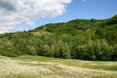 Paesaggio con la collina Fotografie Stock