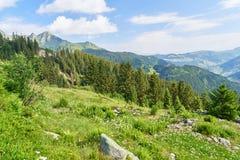 Paesaggio con la foresta nelle alpi francesi Fotografia Stock