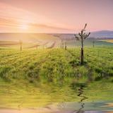 Paesaggio con la riflessione del campo in acqua Fotografia Stock
