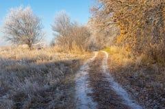 Paesaggio con la strada campestre attraverso le terre coperte di brina fotografia stock