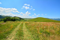 Paesaggio con la strada della montagna di estate. Fotografie Stock