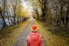 Paesaggio con la strada di autunno Fotografie Stock