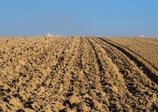 Paesaggio con la terra ed il cielo blu di agricoltura Immagine Stock