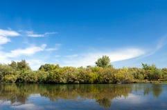 Paesaggio con la vista frontale della foresta e dell'acqua Fotografia Stock Libera da Diritti
