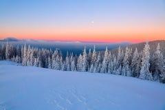 Paesaggio con le alte montagne coperte di neve Struttura congelata interessante Bella alba di inverno con cielo blu arancio Fotografia Stock Libera da Diritti