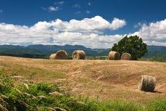 Paesaggio con le balle di fieno in Italia centrale immagini stock libere da diritti