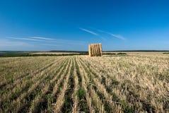 Paesaggio con le balle di paglia Fotografie Stock