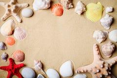 Paesaggio con le conchiglie sulla spiaggia tropicale for Disegni di casa sulla spiaggia tropicale