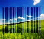 Paesaggio con le linee del codice a barre Immagine Stock Libera da Diritti