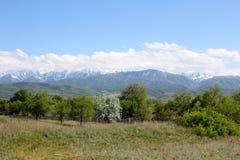 Paesaggio con le montagne Fotografie Stock