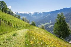 Paesaggio con le montagne, Austria di estate Fotografia Stock