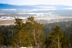 Paesaggio con le montagne e una foresta Fotografia Stock