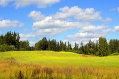 Paesaggio con le nubi bianche Fotografia Stock Libera da Diritti