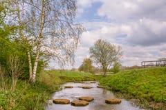 Paesaggio con le pietre facenti un passo in un fiume Fotografie Stock Libere da Diritti