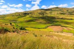 Paesaggio con le risaie nel Madagascar centrale Immagini Stock