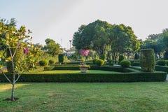 Paesaggio con prato inglese e l'albero Fotografia Stock
