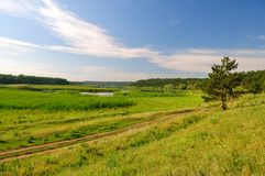 Paesaggio con un'abetaia ed i laghi Fotografia Stock Libera da Diritti